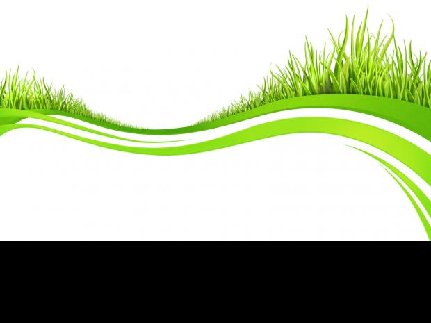 grass02b.png